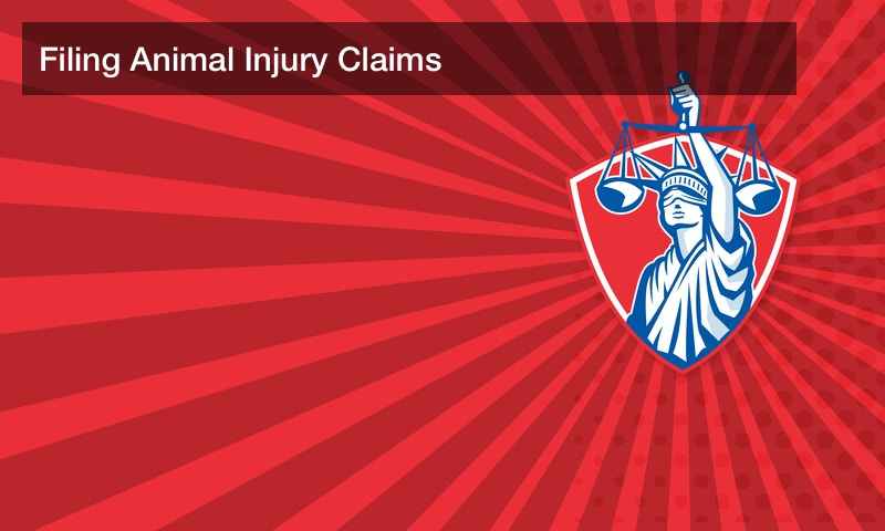 Filing Animal Injury Claims